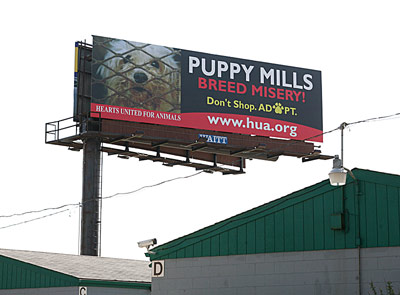At HUA we see the suffering that puppy mills cause every single day. If we  hope to end this horrible practice of holding dogs prisoner year after year  with ... 33b4b42769
